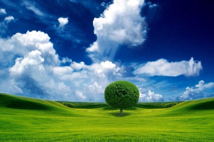 salviamo la terra con gli antichi saperi5 - laviadiuscita.net