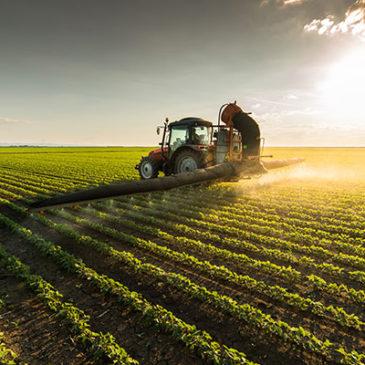 Negli USA poche multinazionali monopolizzano il mercato alimentare ed i contadini subiscono. E in Italia?