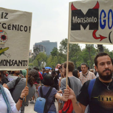 La Monsanto vince il Premio Nobel per l'Agricoltura: firma la petizione per fermarlo!