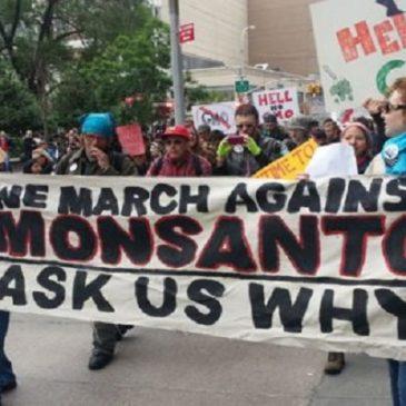 La sfida globale alla sete di monopolio della Monsanto