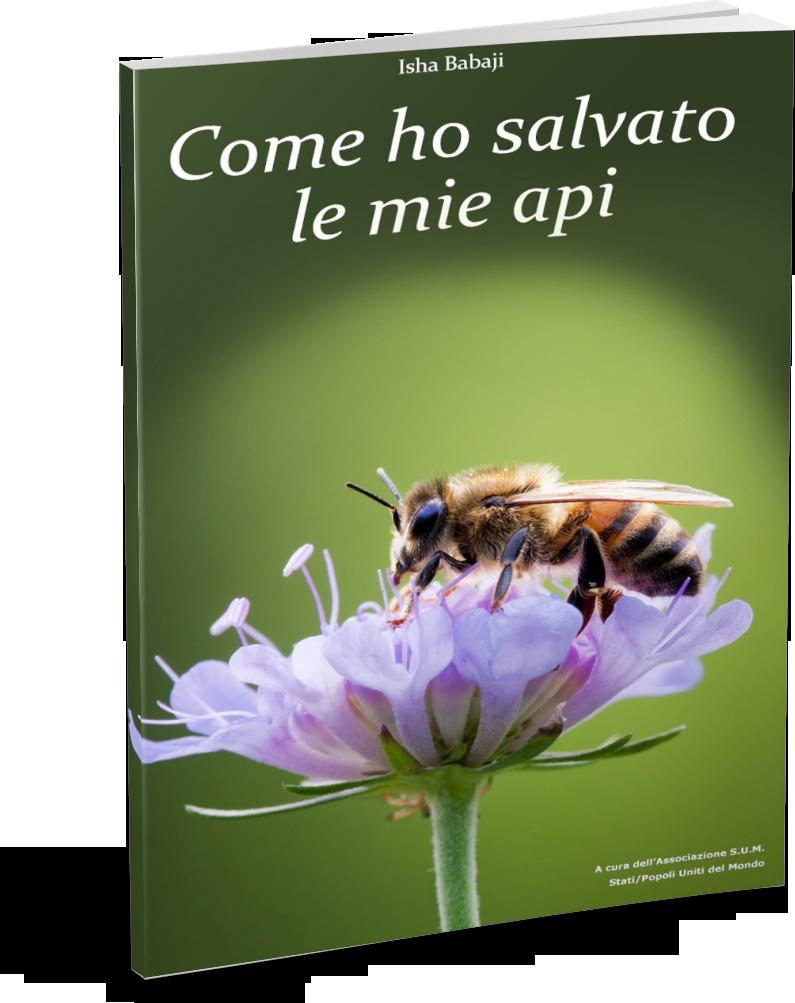 Come ho salvato le mie api