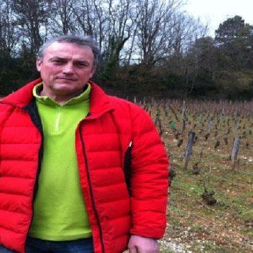 Emmanuel Giboulot, il viticoltore biodinamico che rischia il carcere piuttosto  che usare gli insetticidi