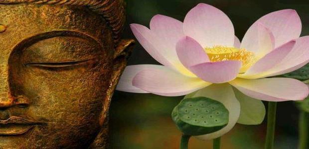 faccia_del_buddha_con_fior_di_loto - laviadiuscita.net