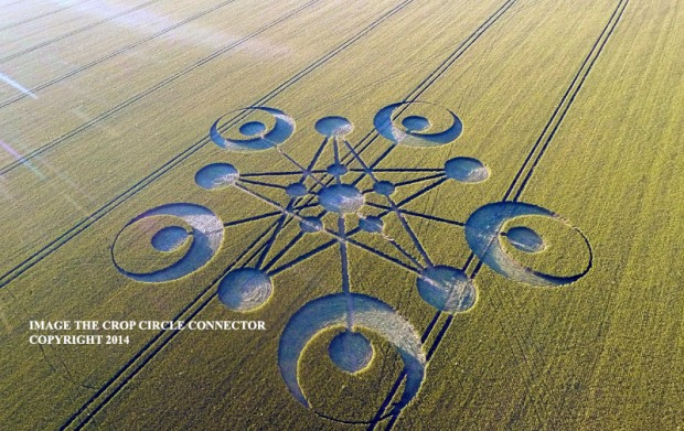 crop circles 2014 n2 laviadiuscita.net