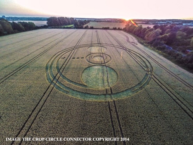 crop circles 2014 n5 laviadiuscita.net