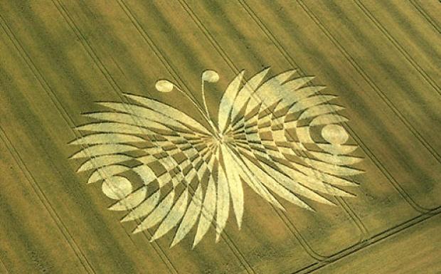 crop circles anni precedenti n12 laviadiuscita.net