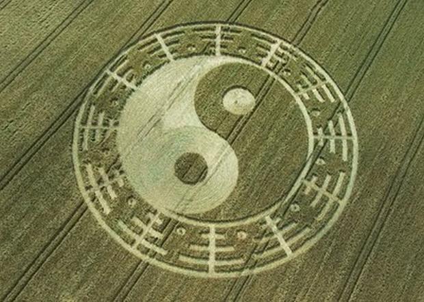 crop circles anni precedenti n5 laviadiuscita.net