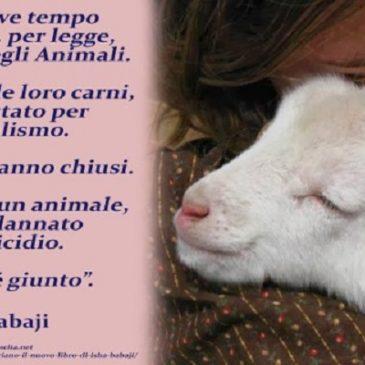 Chiudiamo i mattatoi  ed eliminiamo le violenze fatte agli animali
