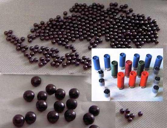 munizioni-al-piombo-laviadiuscita.net
