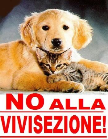 no_alla_vivisezione - laviadiuscita.net