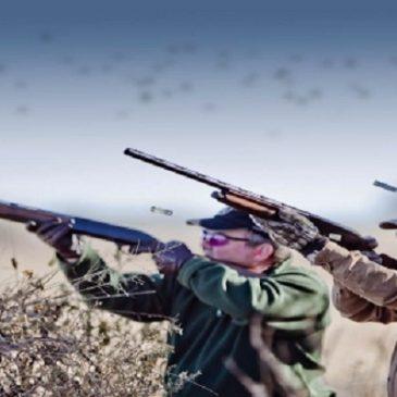 Stop alla caccia!