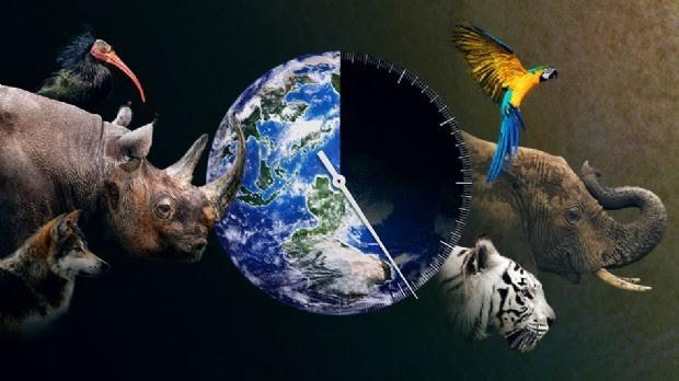estinzione-animali-laviadiuscita