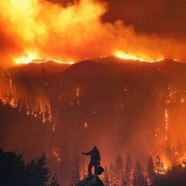 La California brucia, è allarme rosso estremo, mai successo prima. Centinaia di migliaia gli sfollati.